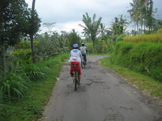 Bali Countryside Cycling Tour: biking