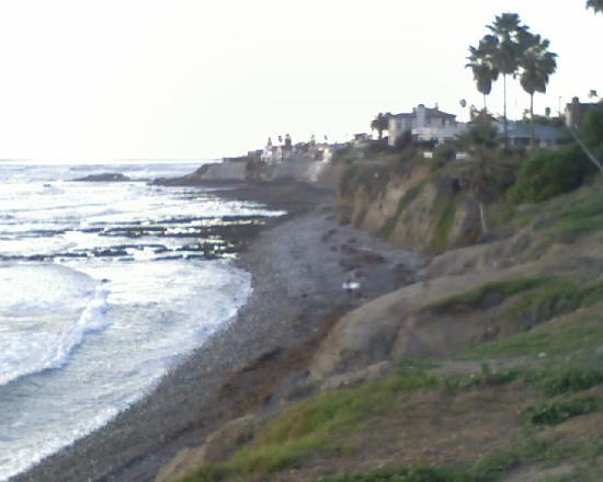 Sands Of La Jolla: This is just a minute walk to see.