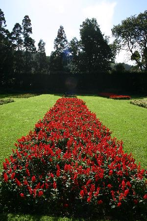 Furnas: Jardim Terra Nostra