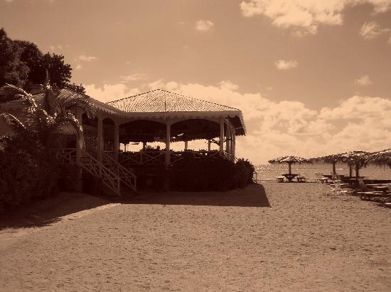 Pusser's Marina Cay Hotel and Restaurant: Beach Bar and Restaurant