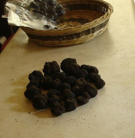 Hostellerie Provencale : Truffles in la Maison de la Truffe