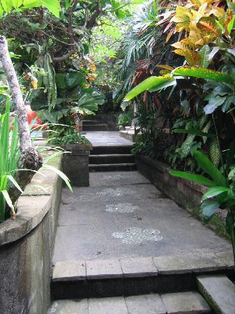 Ellie's: garden pathway by the pool