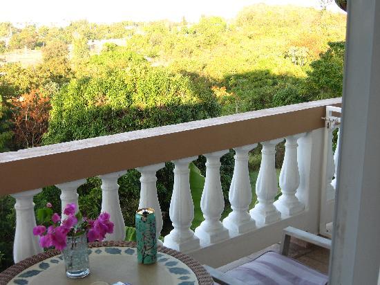 Casa Vista Del Mar Inn: terrace