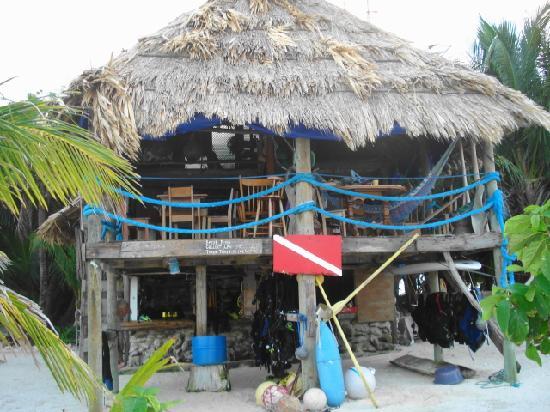 Glover's Atoll Resort: common area & dive shop
