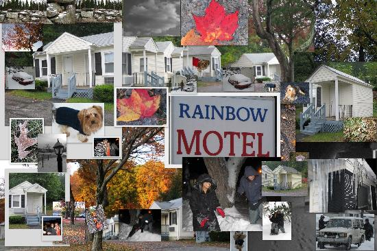 Rainbow Motel: A collage of our 5 month stay for work.