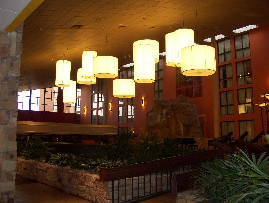Crowne Plaza Denver Airport Convention Ctr: the lobby area...unfortunately it was dark so you cant see the waterfall