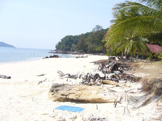 Pansand Resort Ko Bulon Lae: Beach before Resort