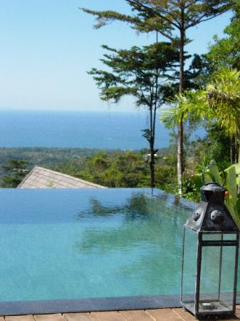 Oxygen Jungle Villas: view from the pool! stunning
