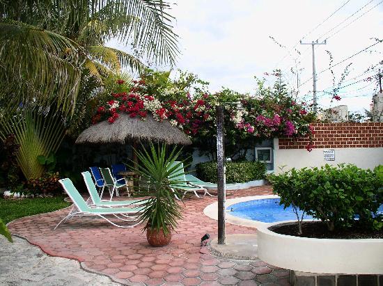 Cabanas Puerto Morelos: Pool