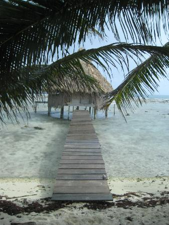 Glover's Atoll Resort: Dock out to Cabin