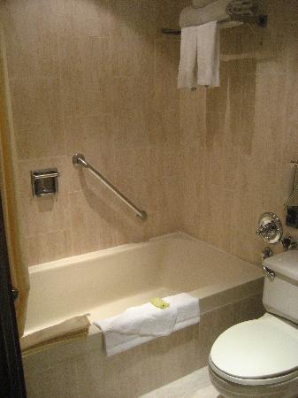 Sercotel Panama Princess: Good shower.