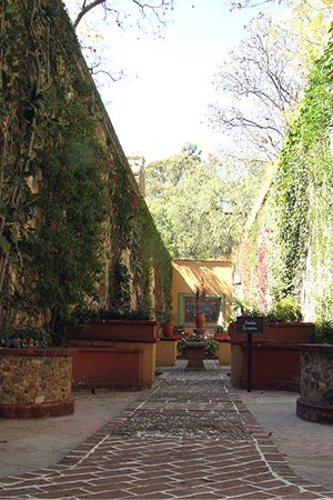 Guanajuato, Mexico: a side garden