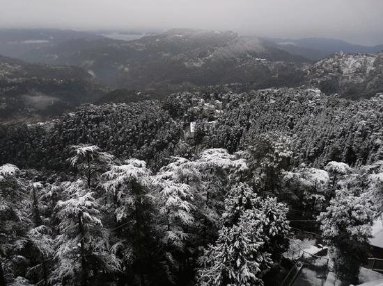 The Oberoi Cecil, Shimla: Morning Snowfall