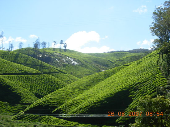 Муннар, Индия: Landscapes of Munnar