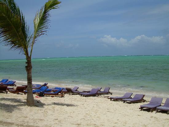 Jacaranda Beach Resort: la spiaggia dell'albergo