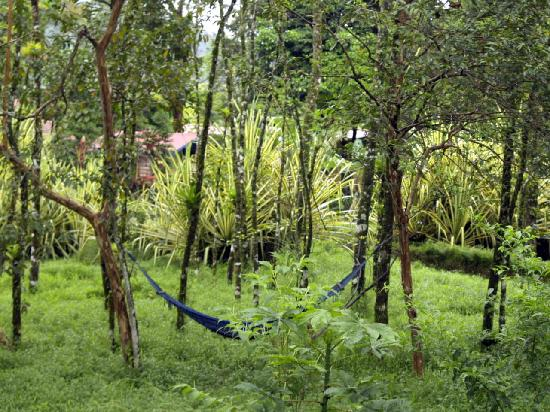 Cerro Chato Eco Lodge: more interesting grounds