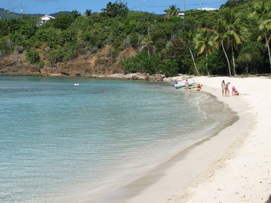Great Small Beach And Snorkeling With The Turtles Review Of Honeymoon St Thomas U S Virgin Islands Tripadvisor