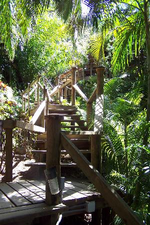 Anthony's Key Resort: The long hike up to the restaurant!