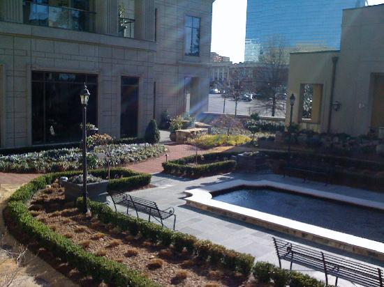 Mandarin Oriental, Atlanta: garden in february