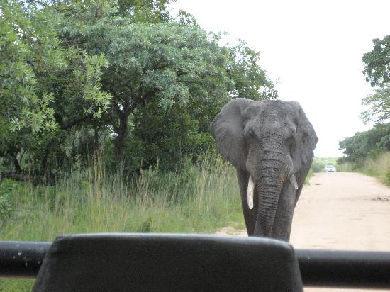 Igwala gwala: our day trip!