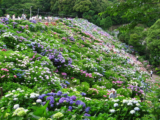 Gamagori, Japonya: 形原温泉
