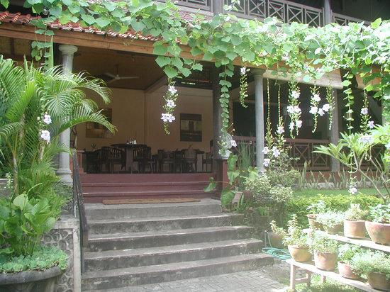 Asmara Restaurant & Bar: Garden entrance at Asmara