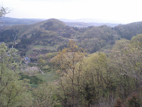 Mt. Koubo: ハイキングコースからの眺め