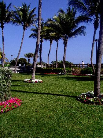Holiday Inn Miami Beach: Garden