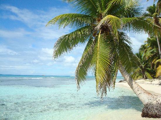 Grand Bahia Principe Turquesa: Ilsa Saona