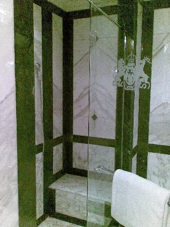 Hotel Imperial Vienna: Shower stall in room 402
