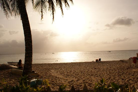 Paynes Bay Beach: Sun starting to set...
