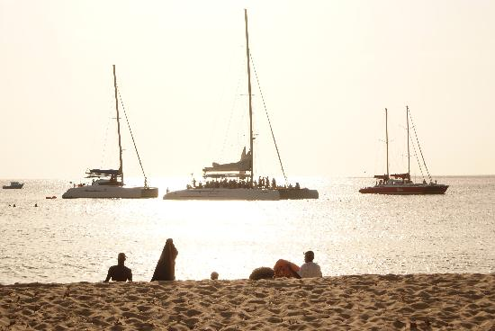 Paynes Bay, Barbade : Sun set cruise - turtle spotting