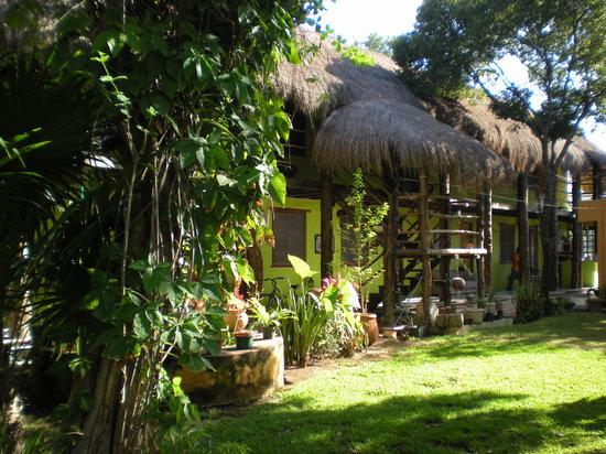 Koox City Garden Hotel: le jardin trés calme