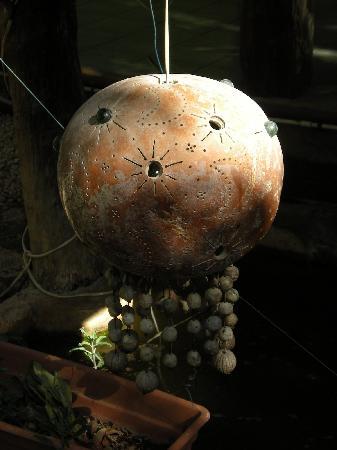Koox City Garden Hotel: lampes qui éclairent les poissons dans le jardin