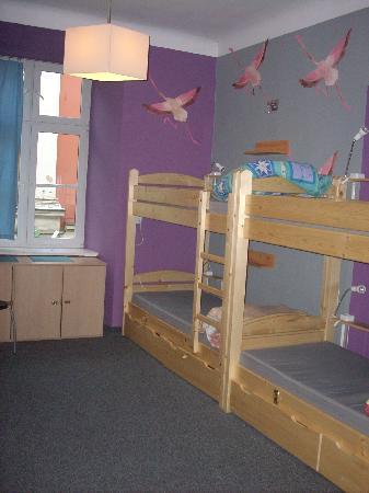 Flamingo Hostel: Our room