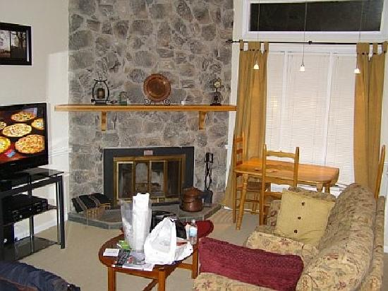 Wintergreen Resort: Living room of one-bedroom condo (Laurelwood #718)