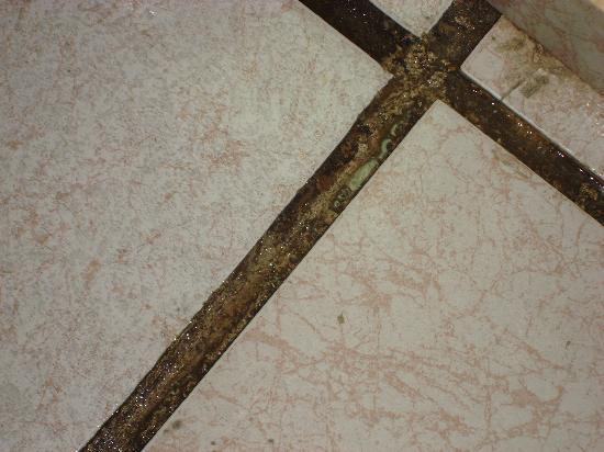 Coral Costa Caribe Resort & Spa: Nasty Floors