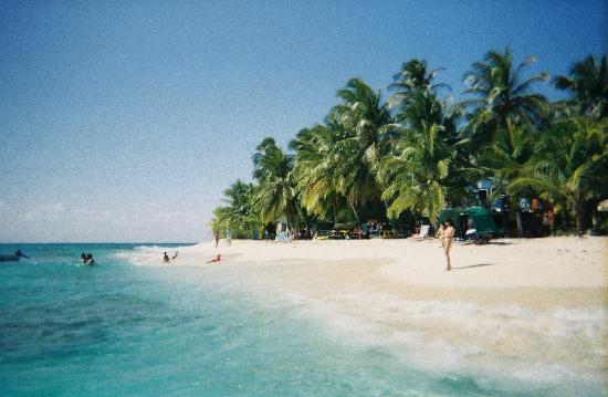 Sol Caribe Campo: Johnny Cay