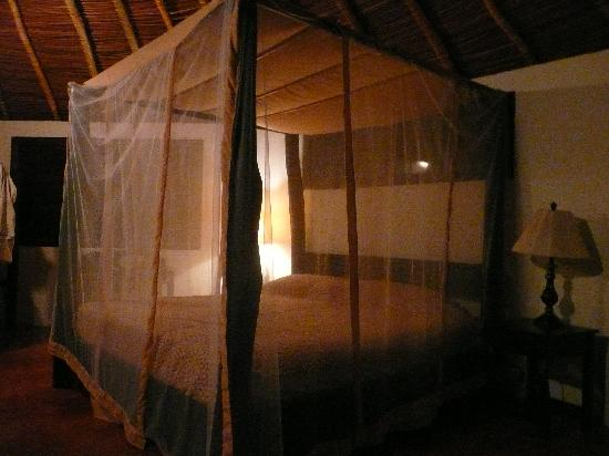Totoco Eco-Lodge: Great beds! Mosquito netting, but I never saw any mosquitos or any other annoying bugs