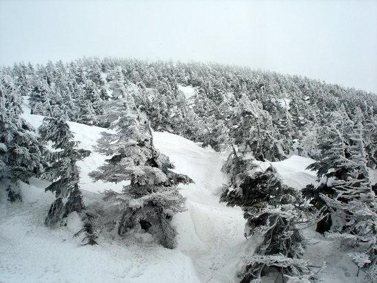 Yamagata Prefecture, Japon: Mount Zao Peak