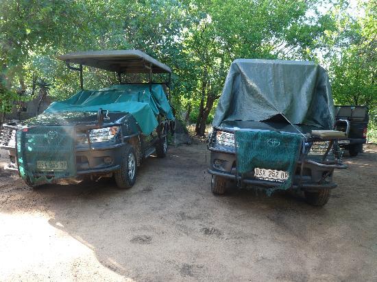 Kwa Madwala Private Game Reserve: safari jeeps