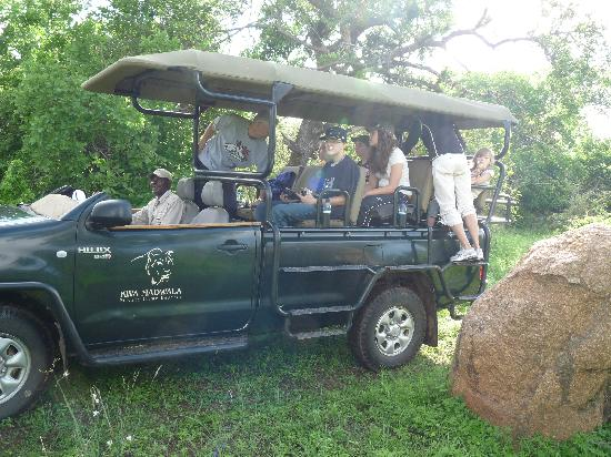 Kwa Madwala Private Game Reserve: Back on the bus