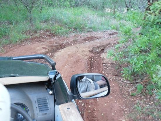 Kwa Madwala Private Game Reserve: bumpy roads