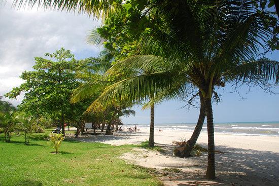 La Delphina Bed and Breakfast Tours : On the beach near La Delphina