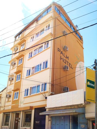 Palm Hotel : Small hotel yet cosy and friendly