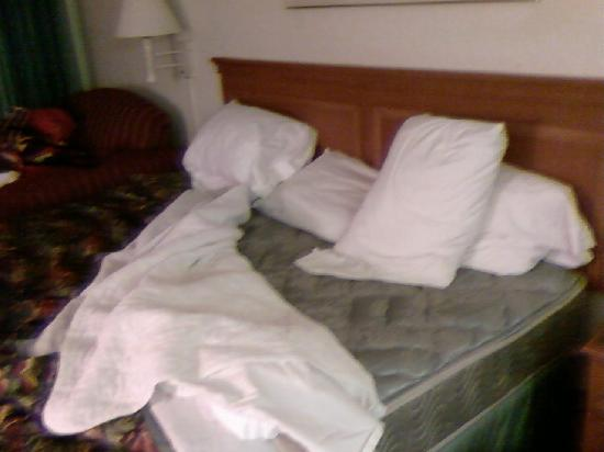 Red Roof Inn Tulsa Airport: No fitted sheet??