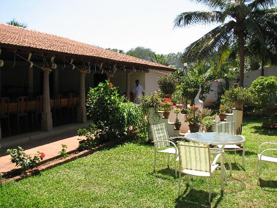 The Bangala: The Garden