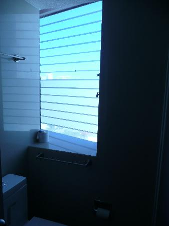 Condominios Carisa y Palma : bathroom window (I could not get it open)