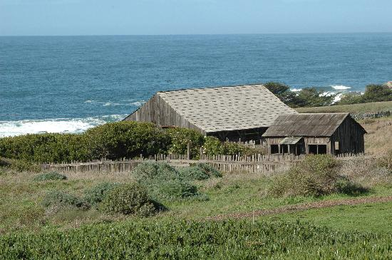The Sea Ranch, Калифорния: The view from our room