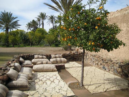 Relais & Châteaux Ksar Char-Bagh: gardens
